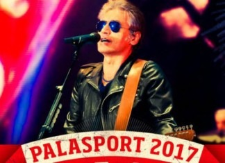 ligabue palasport tour