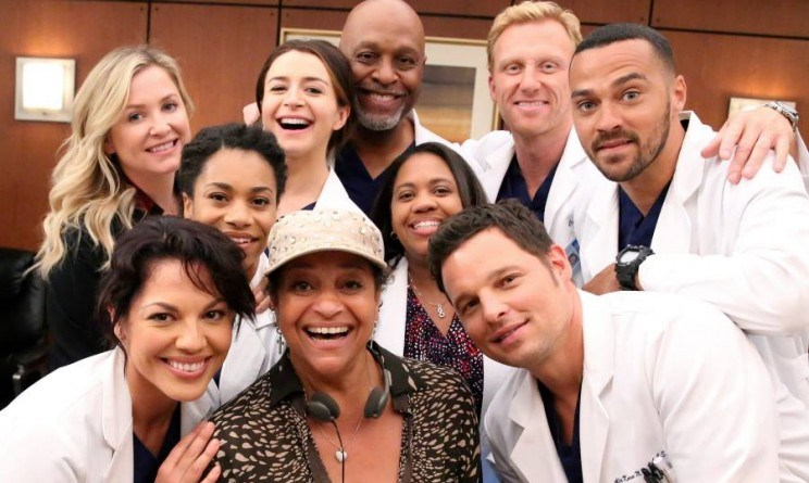 grey s anatomy 12